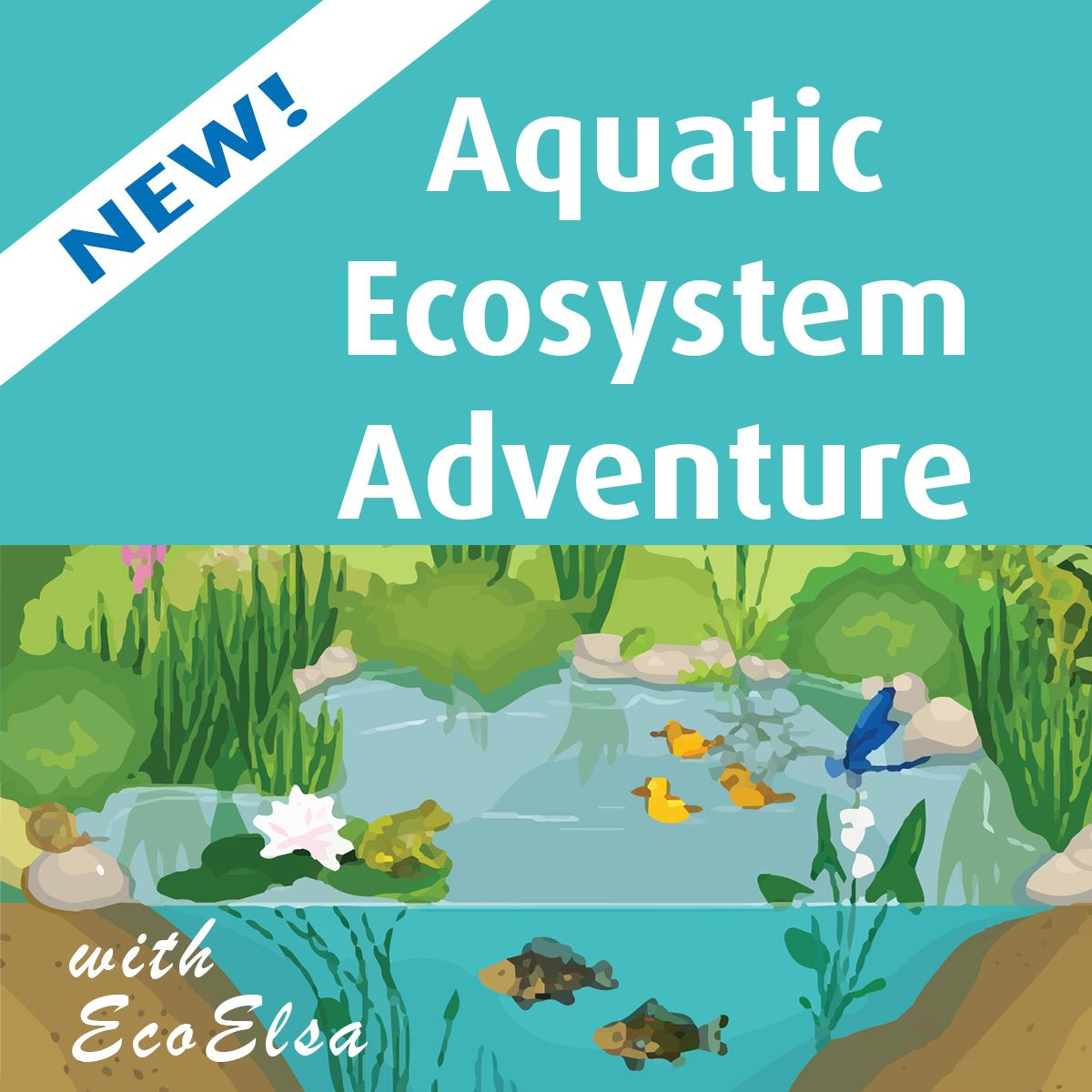 cartoon picture of kids around water with text New! Aquatic Ecosystem Adventure with EcoElsa